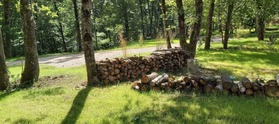 Les emplacements de camping semi ombragé au coeur de la forêt