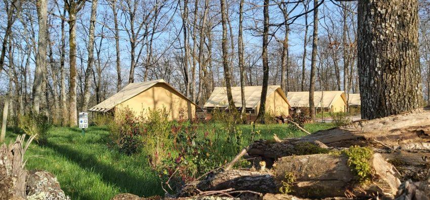Les tentes lofges dans la foret